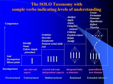 solo_taxonomy